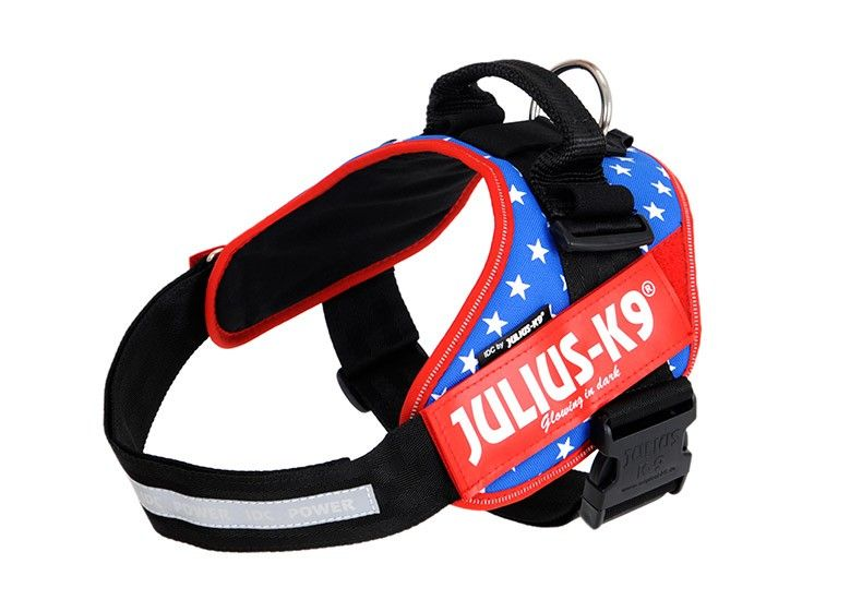 Http Www Lazada Co Th Pet Supplies Harness Dog Body Padded Extra
