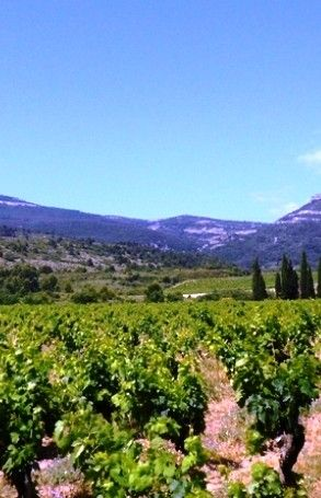 A romantic getaway to the South of France