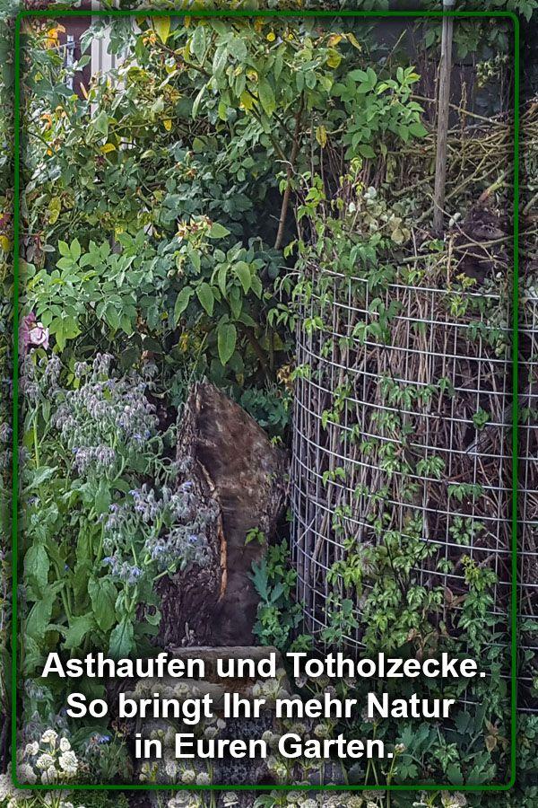 Ein Asthaufen im Drahtkomposter.