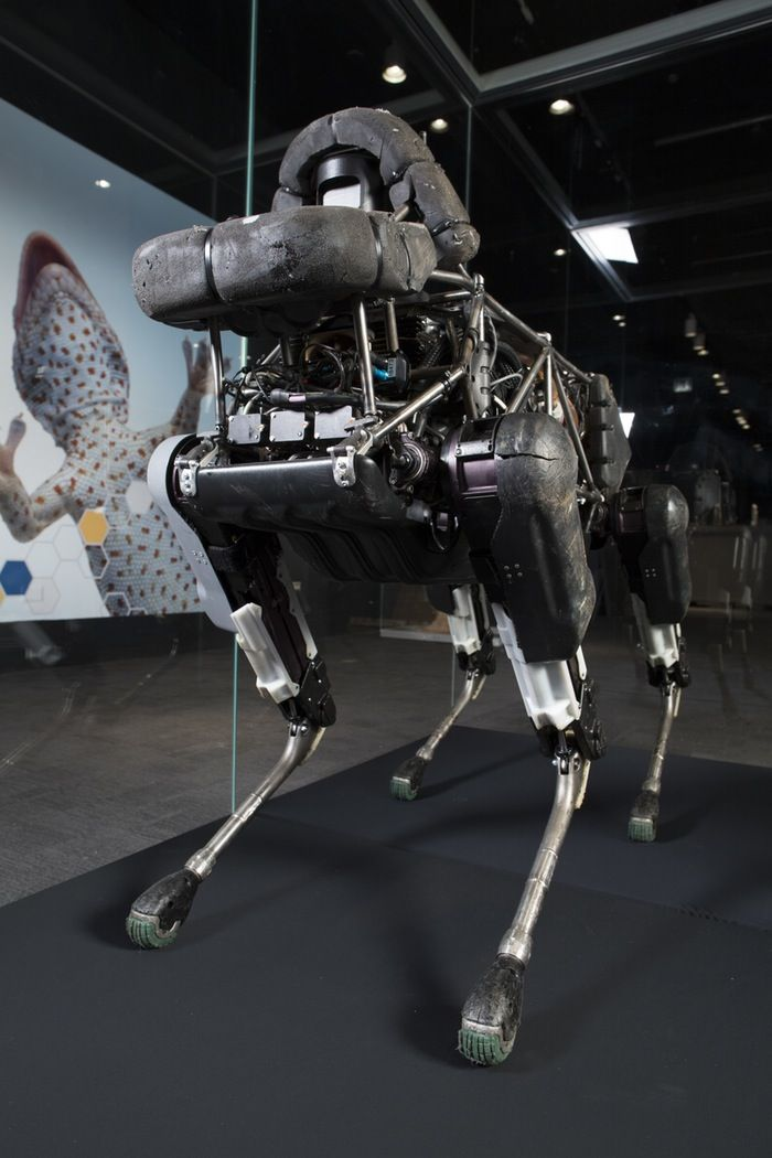 Darpa S Insane Robots Take Over Chicago S Museum Of Science And