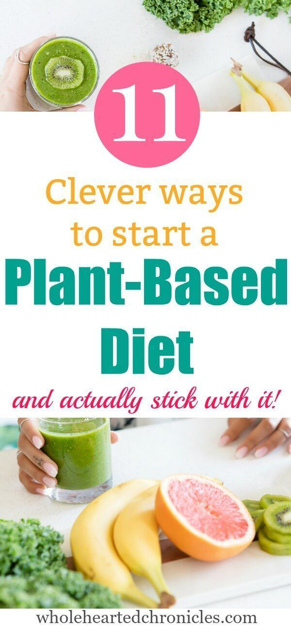 Plant Based Diet For Beginners Recipes Clean Eating