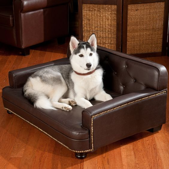 Faux Leather Dog Bed Ideas Spiffy Pet Products Dog Sofa Dog