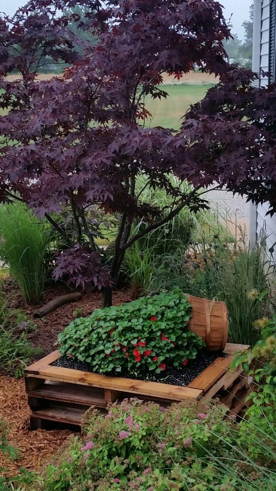 Cottage garden landscape design ideas  Basket of