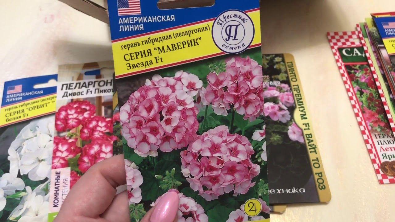 семена необычные сорта