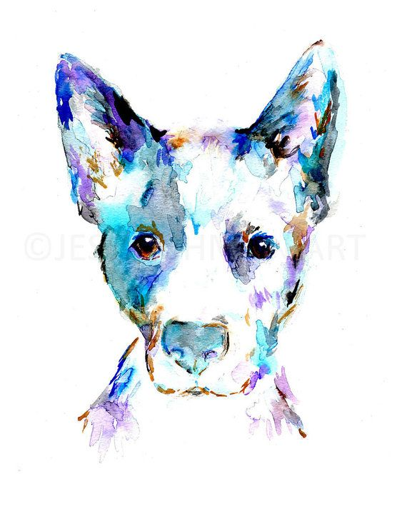 Blue Heeler Watercolor Print Blue Heeler Art Dog Painting Dog