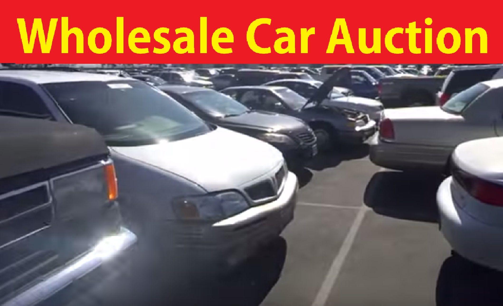 Wholesale Cars Dealer Auto Auction Adesa Car Auctions 1