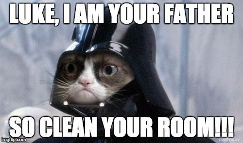 Funniest Meme Clean : Image result for cat memes clean funny grumpy cats pinterest