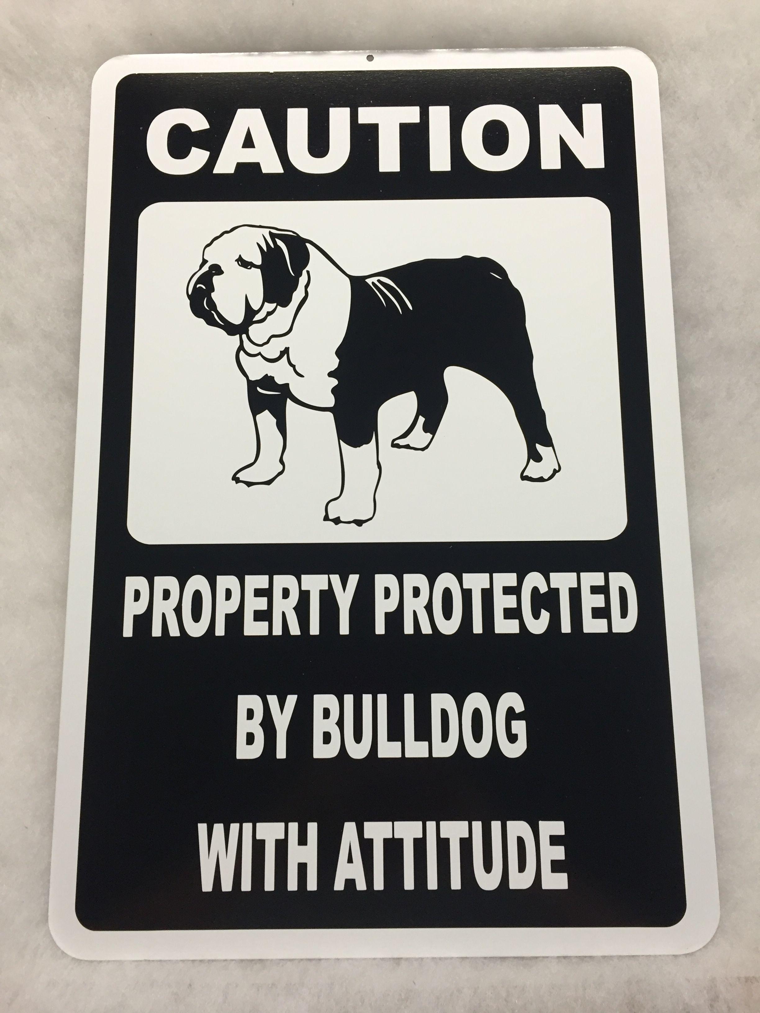 Pin On Awesome Bulldog