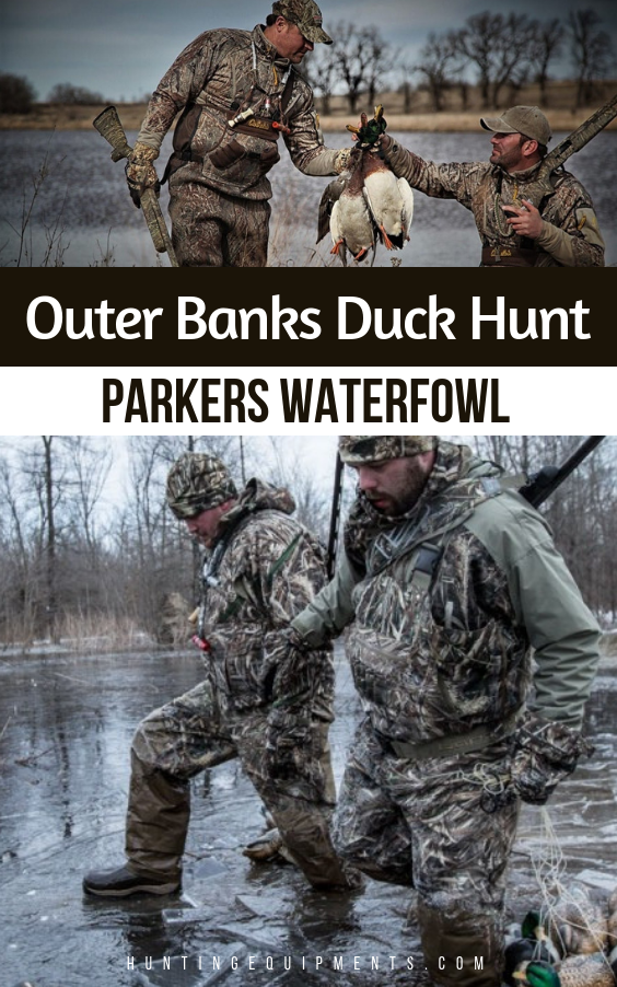 Outer Banks Duck Hunt Duck hunting, Waterfowl, Waterfowl