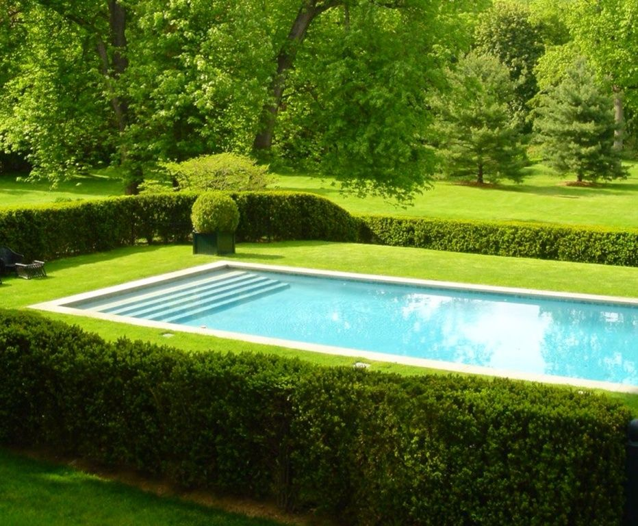 Traditional Swimming Pool with Private backyard, Box hedge ...