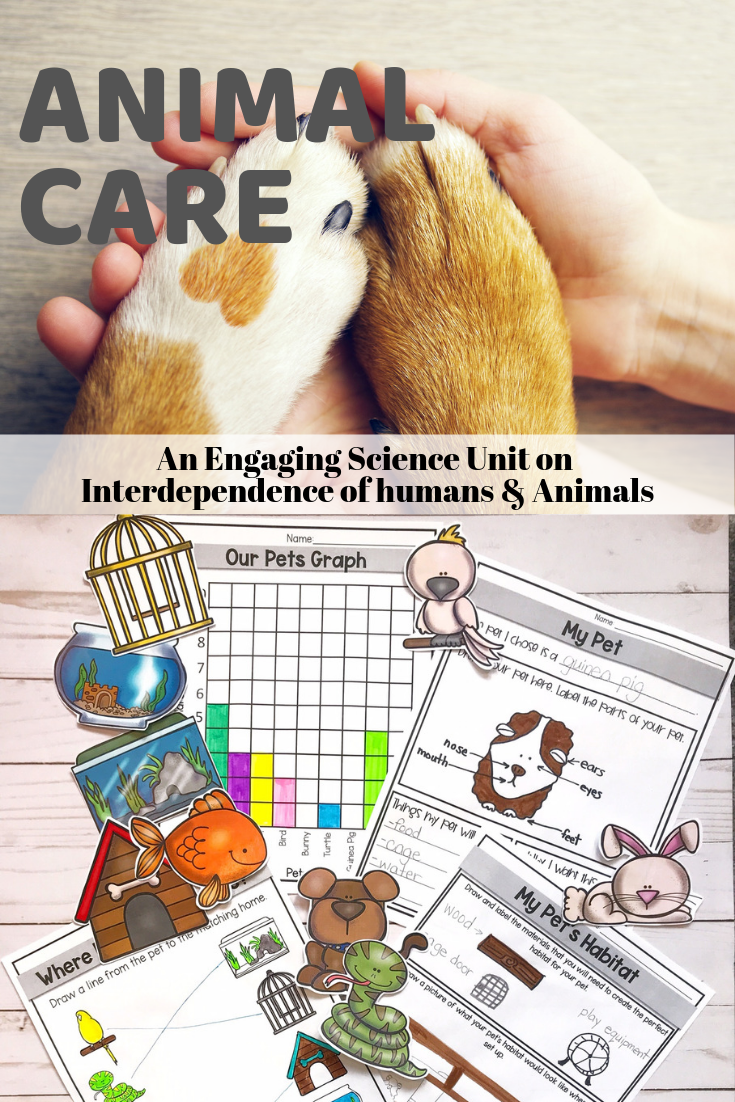 Animal Care Pet Care Pet Care Printables Science Units