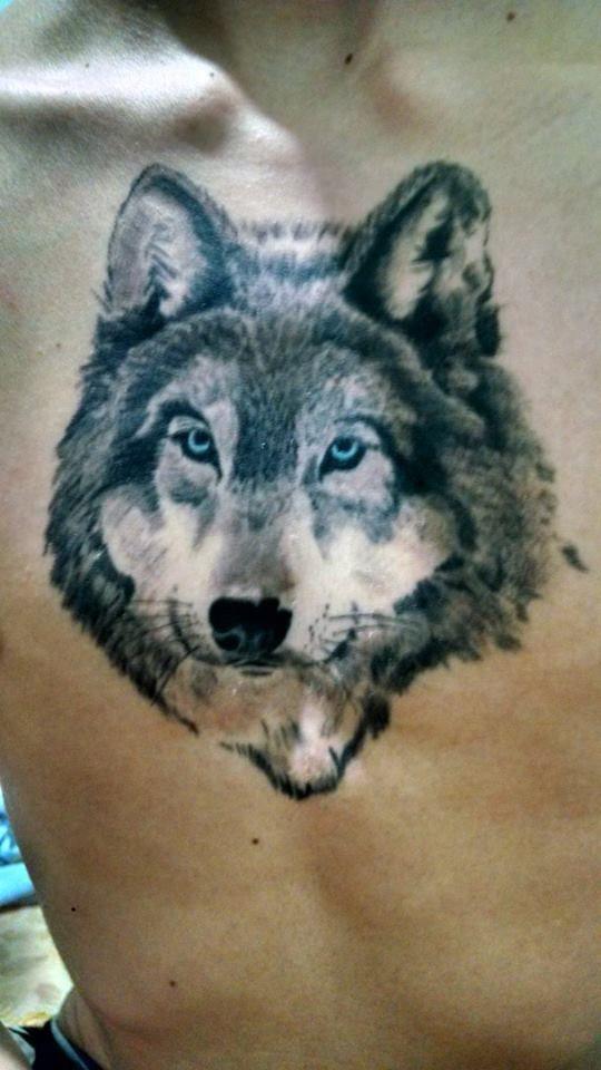 lobo - tattoo realistic wolf | Tatuagens | Pinterest | Tattoo