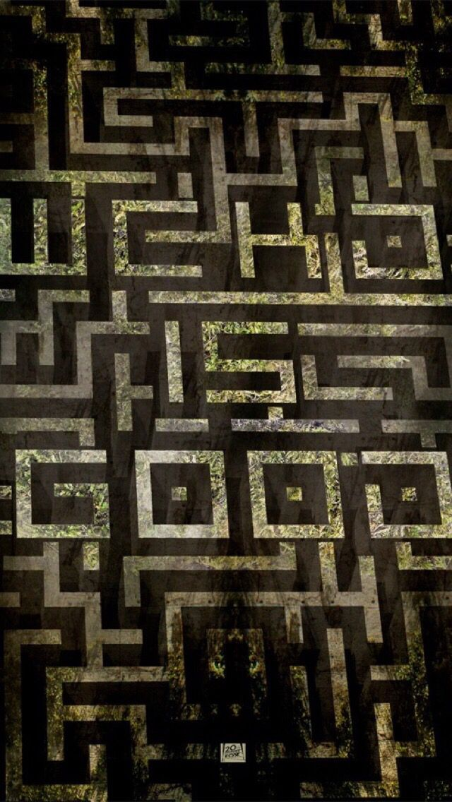The Maze Runner Hq Movie Wallpapers The Maze Runner Hd Movie
