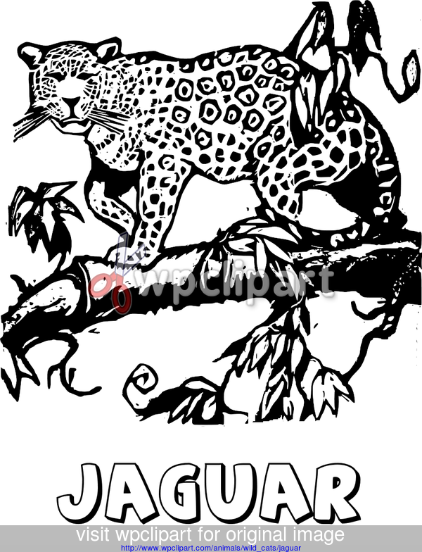 street art coloring pages | Jaguar coloring page Index of ...