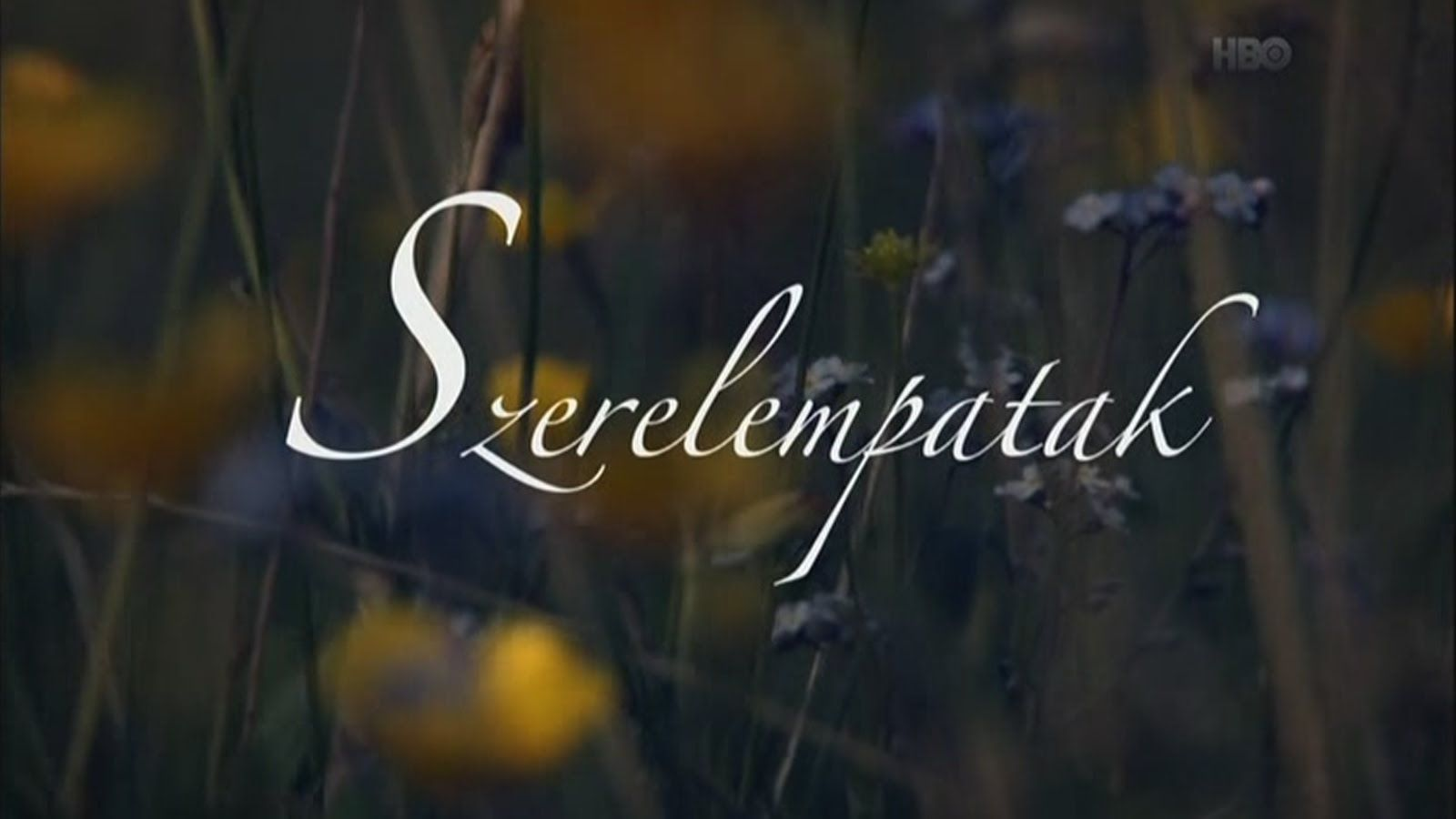 Szerelempatak Documentaries Film Hbo