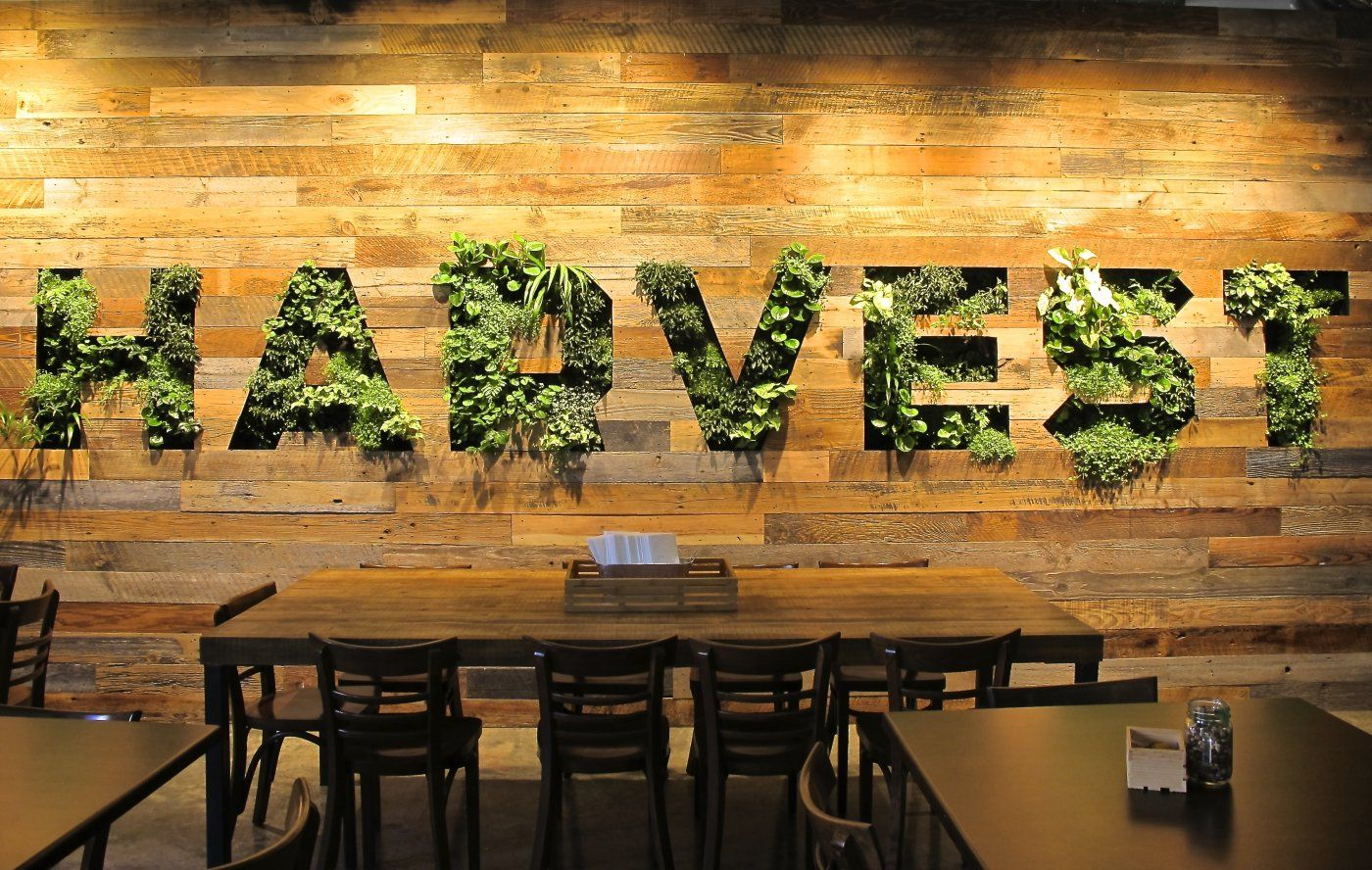 facebook- harvest cafe- living wall, habitat horticulture - Habitat ...
