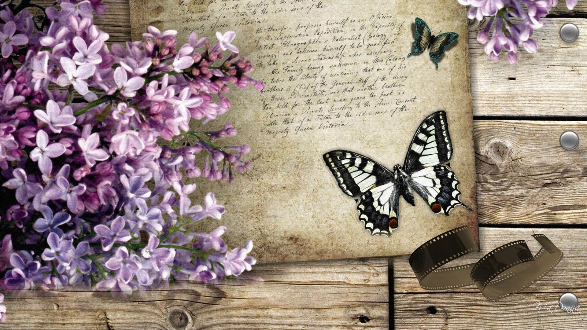 Обои мотылек, цветы, Коллаж. Разное foto 17