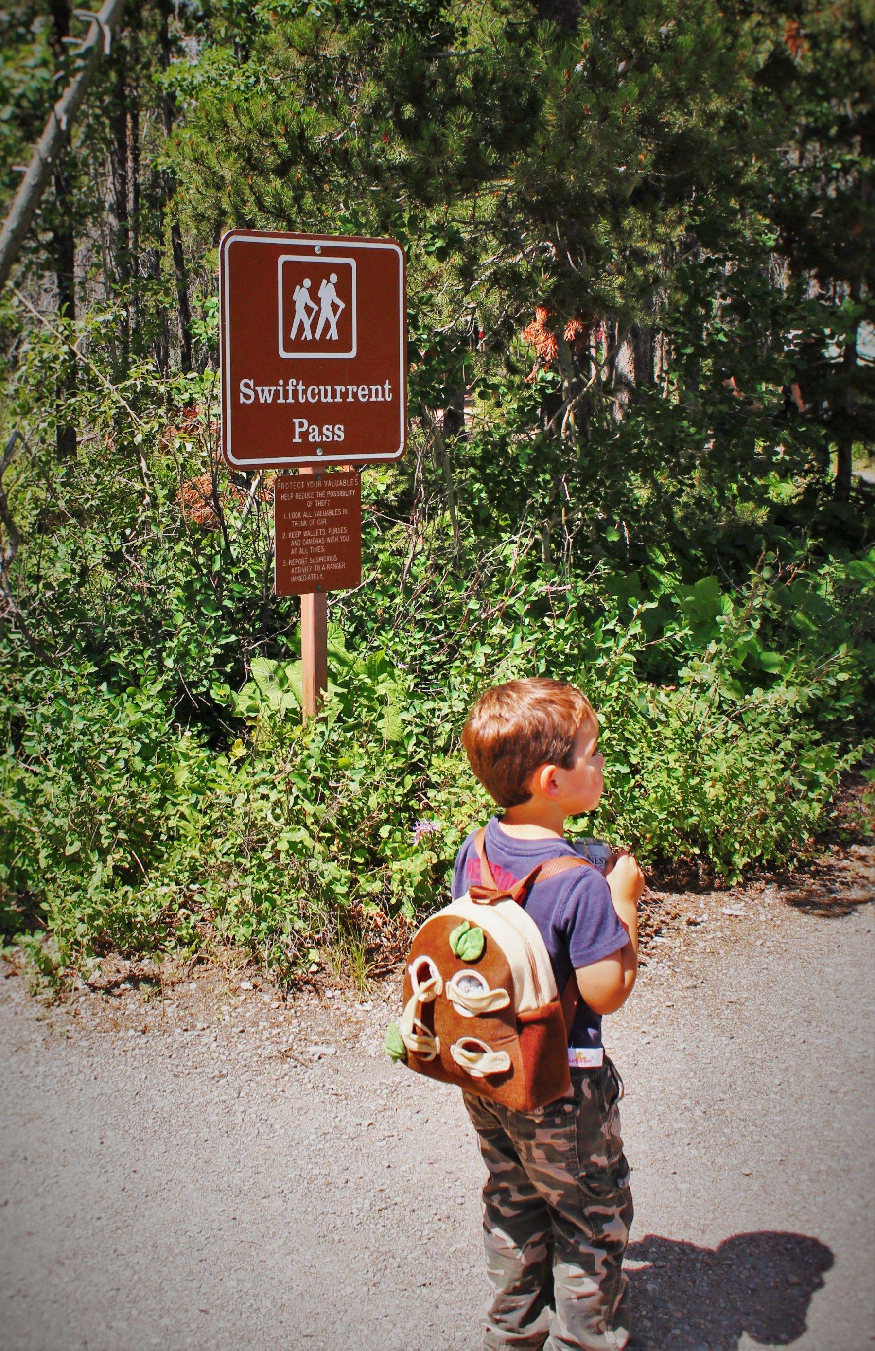 Hiking in Glacier National Park: Many Glacier with kids
