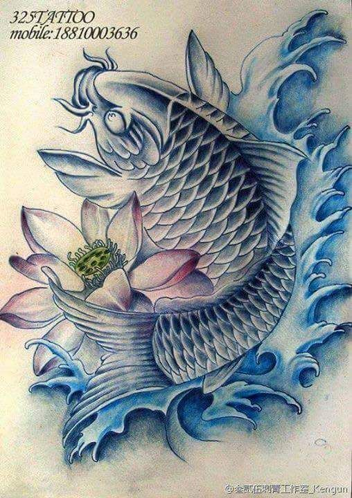 Pin by cavalheiro tatuador on carpas pinterest koi for Japanese koi carp tattoos