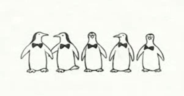 Unos pingüinos con una habilidad especial, verás en está tarjeta de cumpleaños como son capaces de sorprenderte.