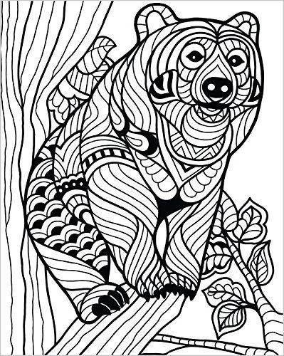 ColorIt Wild Animals Coloring Book Premium Hardcover With Top Spiral Binding Grown Up Coloring