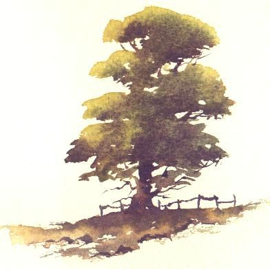 Watercolor Tree Crafts Artsy Trees Watercolor Art Art Alevel