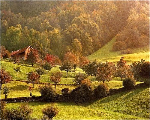 I Like It Wild And Pure...Always In The Country !... http://samissomarspace.wordpress.com