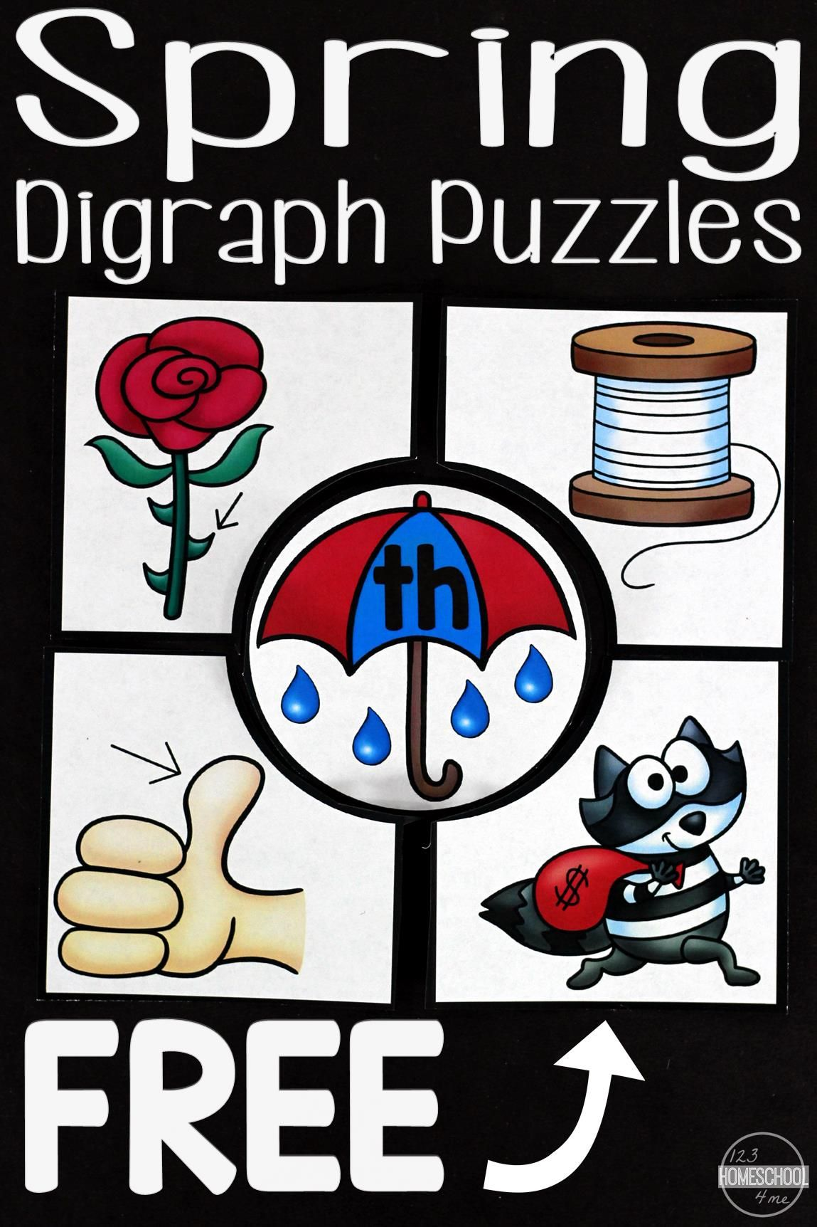 Free Spring Digraph Puzzles