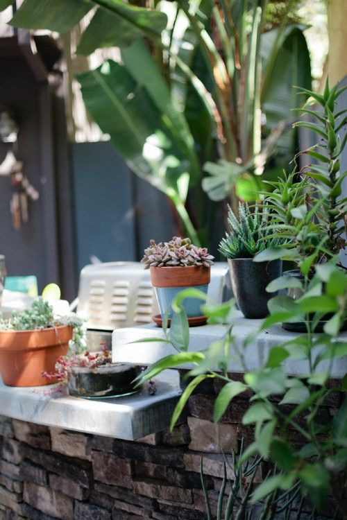 Indoor Outdoor Gardener One of my favorite things about living in los angeles is how easy it one of my favorite things about living in los angeles is how easy it is to plants indoorindoor outdooroutdoor workwithnaturefo