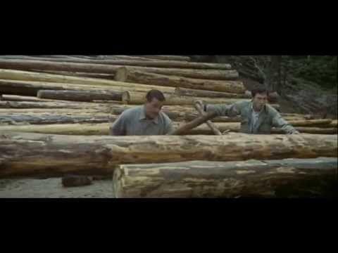 Les grandes gueules film complet - Bourvil- Ventura- Constantin | Films  complets, Bourvil, Film