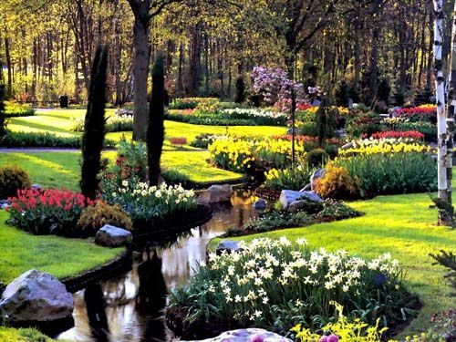 Giardini fioriti giardino pinterest giardini e giardino for Alberelli fioriti da giardino