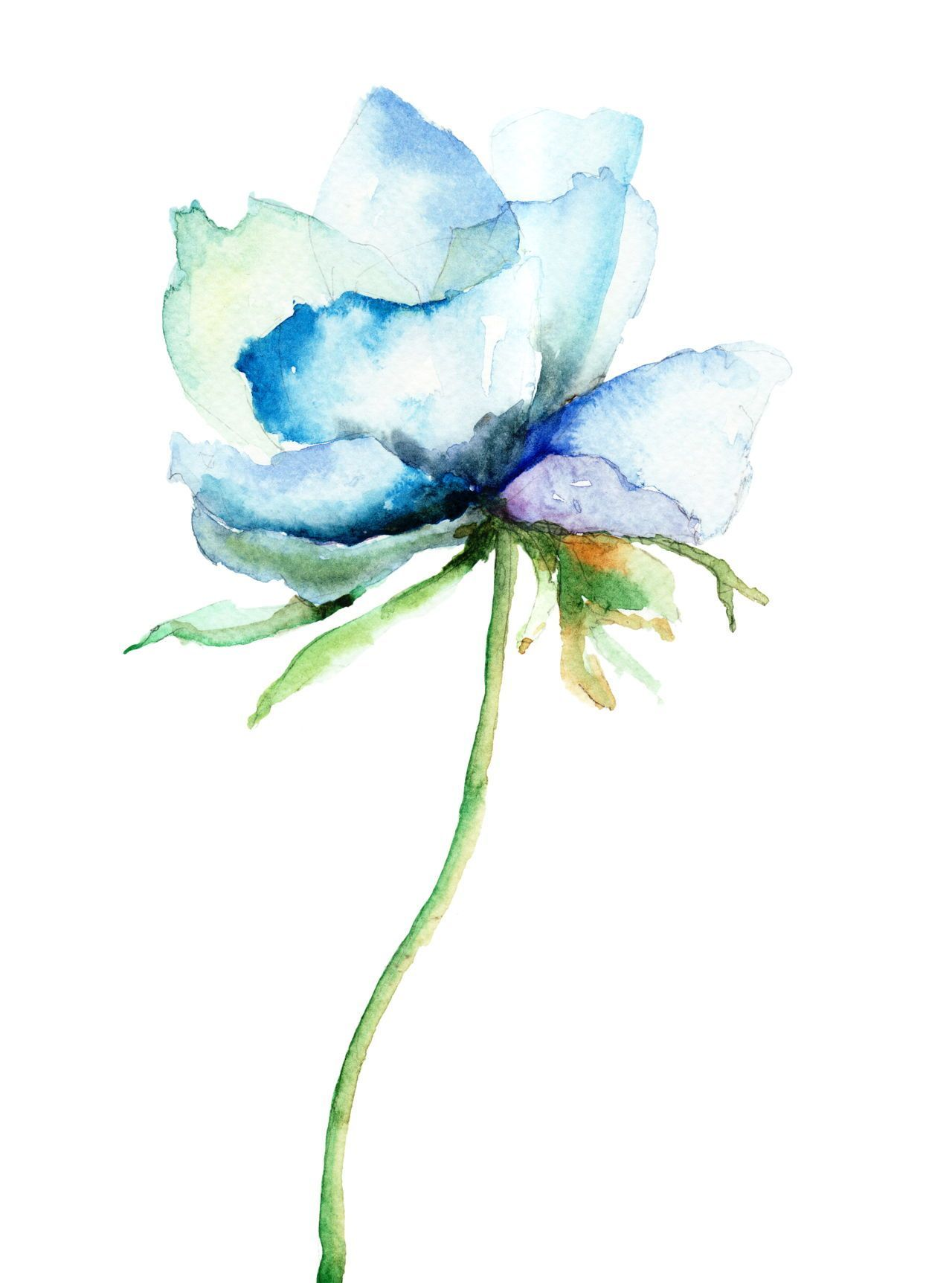Watercolor Arts With Images Watercolor Flowers Paintings Blue