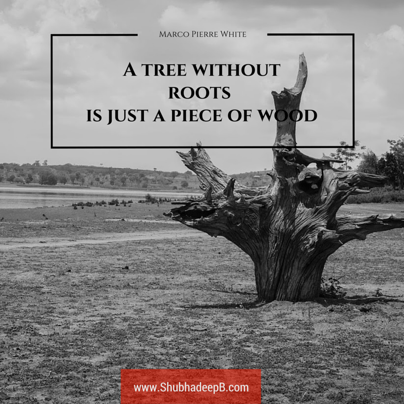 Quote Quot A Tree Without Roots Is Just A Piece Of Wood