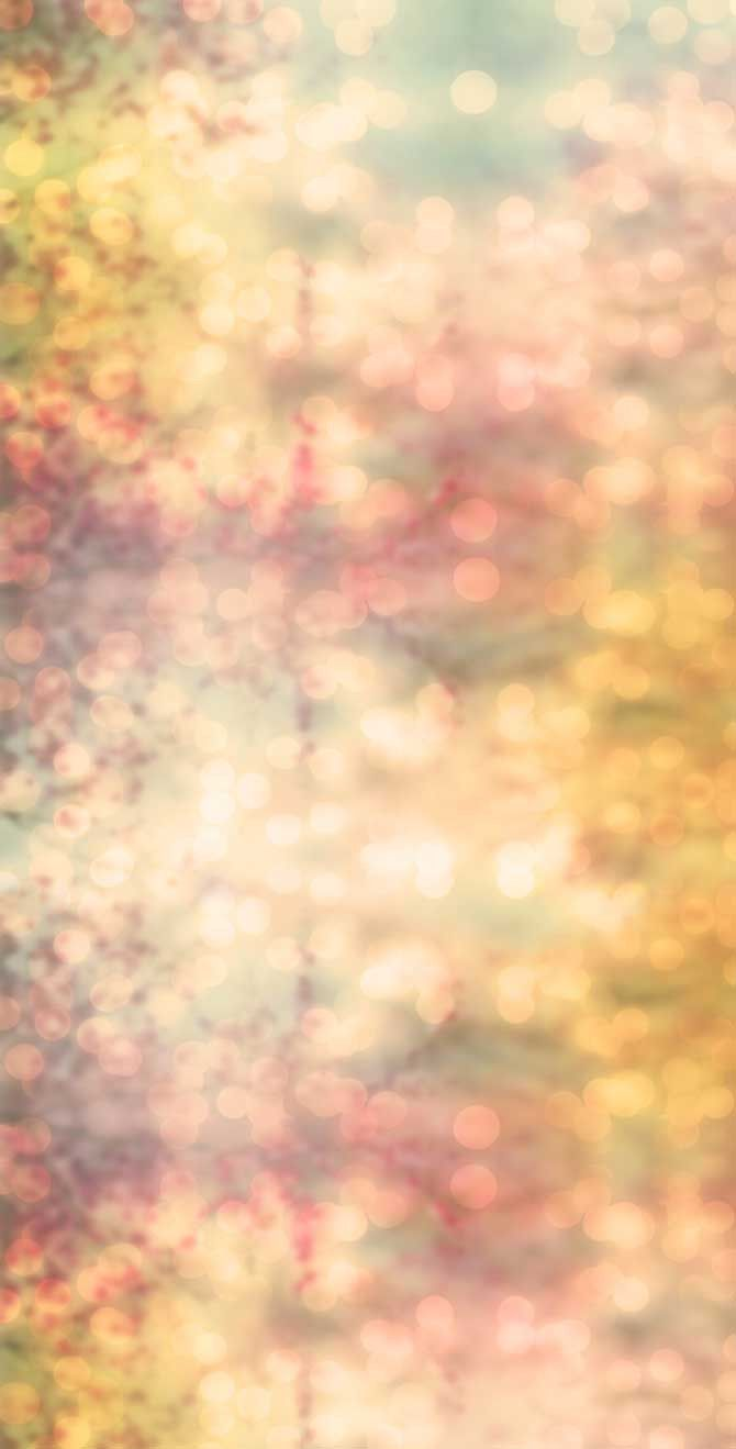 2167 Printed Bokeh Backdrop