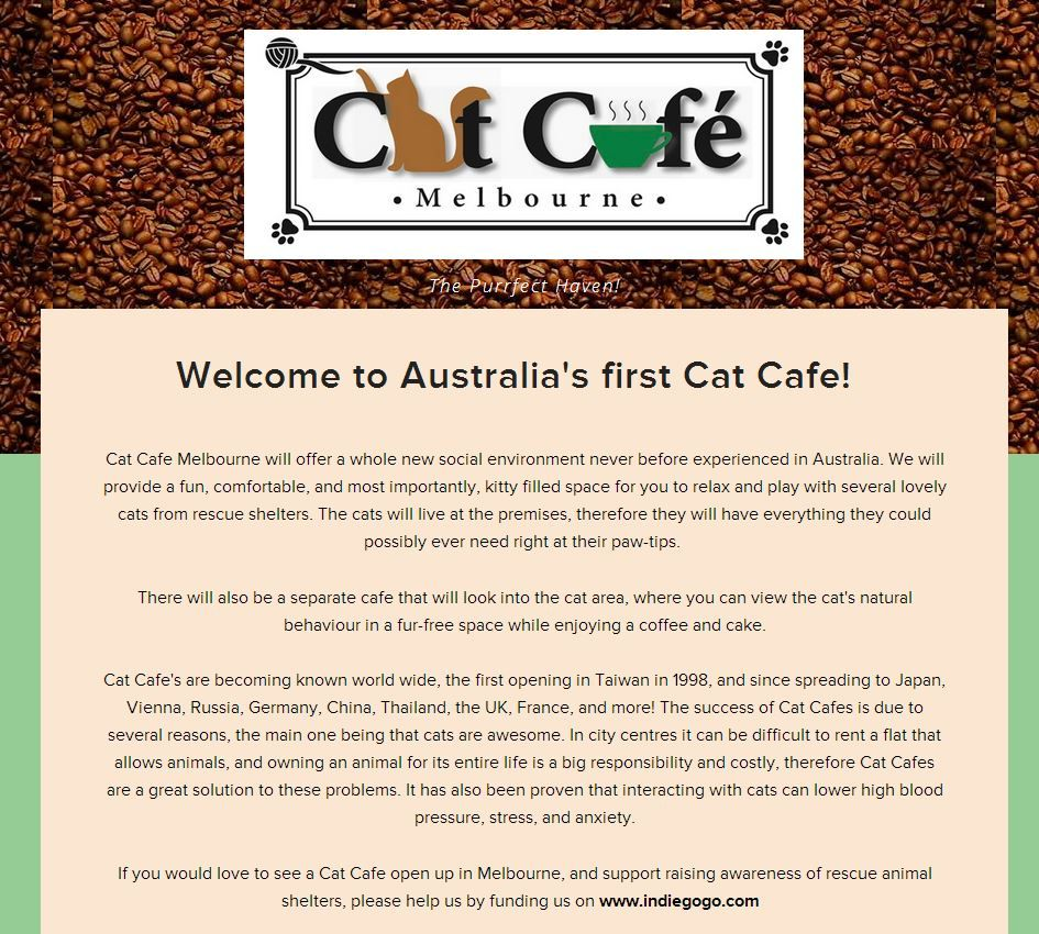 A Cat Cafe Is Opening In Melbourne Soon Who S Excited If You Love The Idea And Would Like To Support Cat Cafe Melbour Cat Cafe Animal Stories How To Find Out