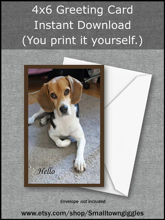 Printable Greeting Card DOG HELLO Beagle Birthday Thank You Note Instant Download Thinking Of Y