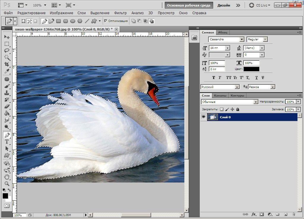 Как создать картинку без фона в фотошопе