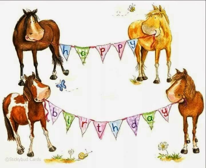 Happy 1 Birthday Happy Birthday Horse Country Birthday Horse