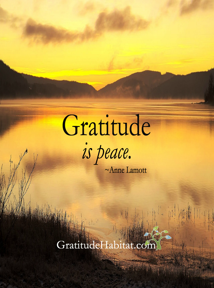 Gratitude is peace. Thank you, Anne Lamott Visit us at