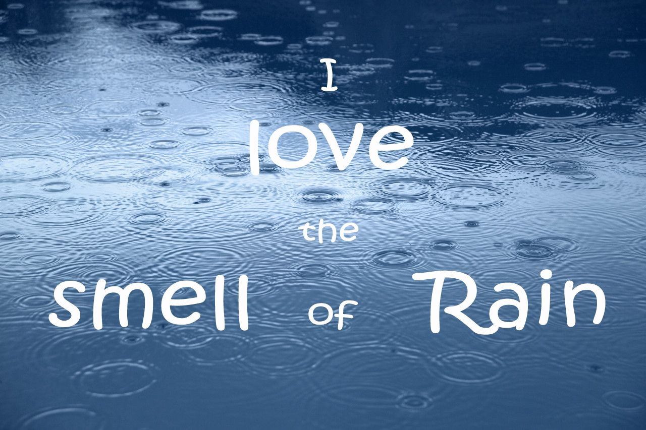 Merveilleux The First Drops Of Rain Always Bring A Smile On Our Faces. The Smell Of