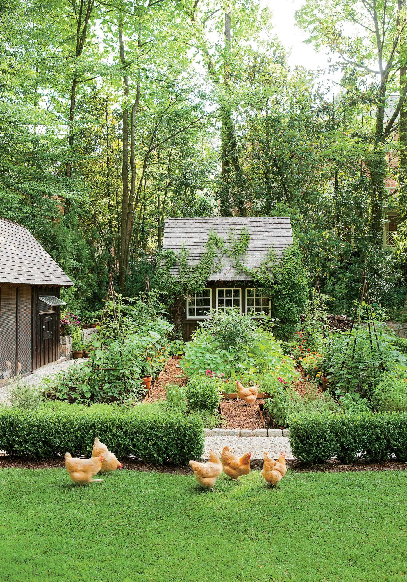 An Atlanta couple and their son team up to build a multifaceted garden that's rooted to the house.
