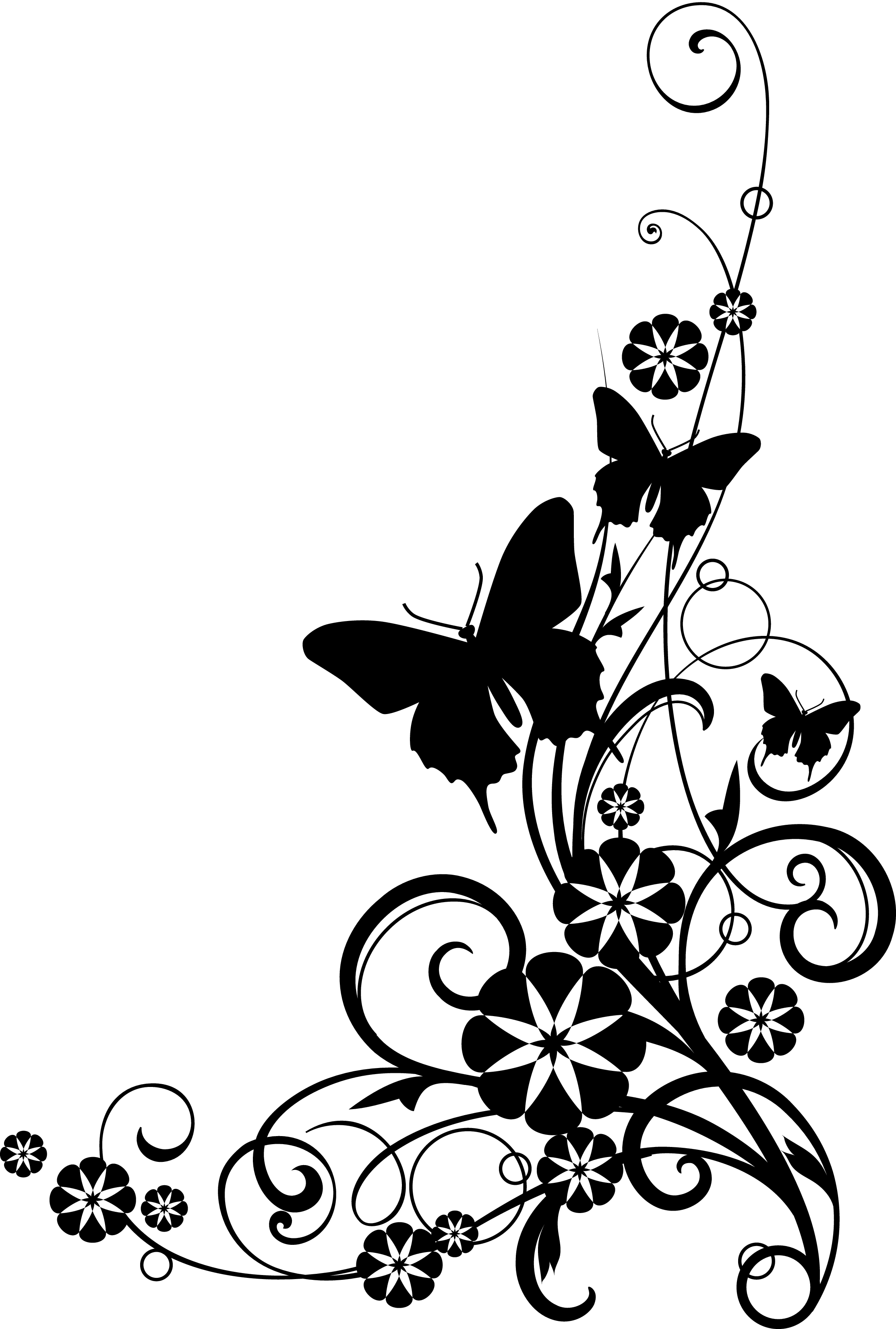 Wildflower Sketch Black And White