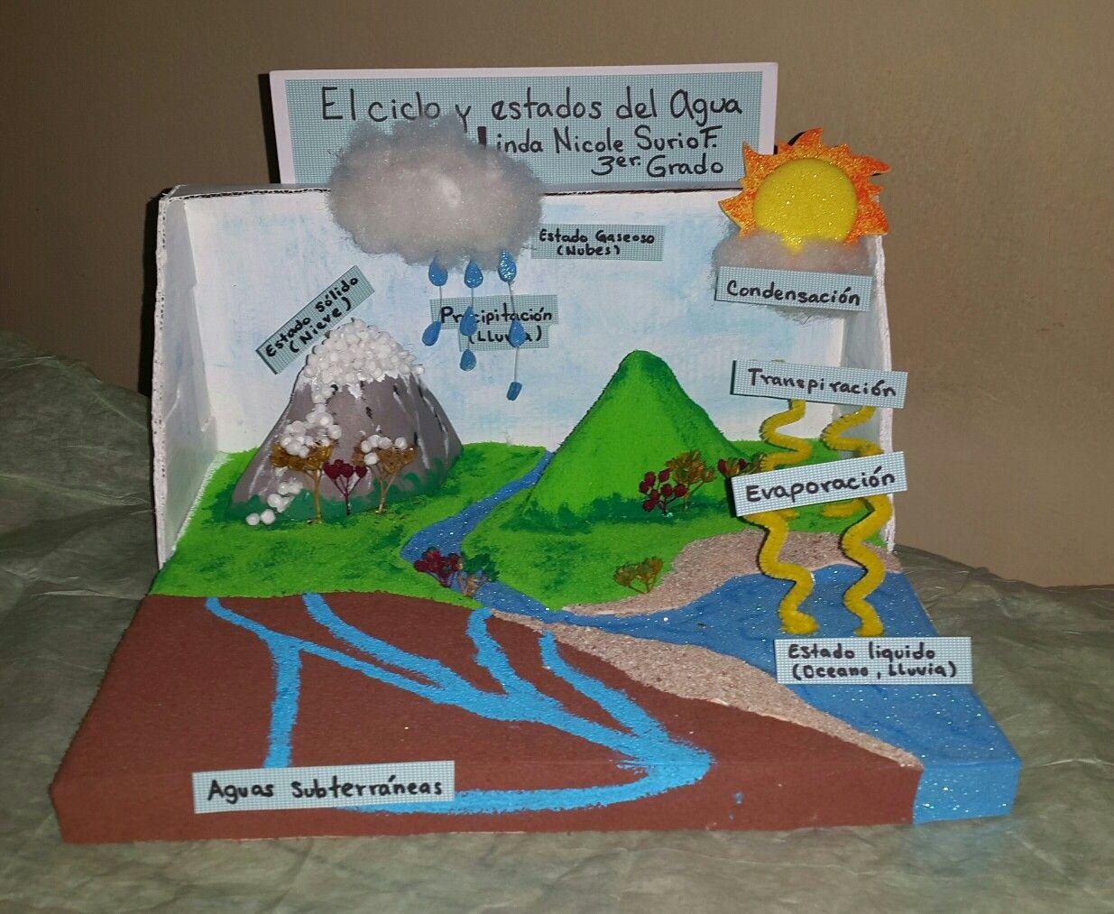Worksheet. Maqueta de El ciclo y estados del agua  maquetas escolares