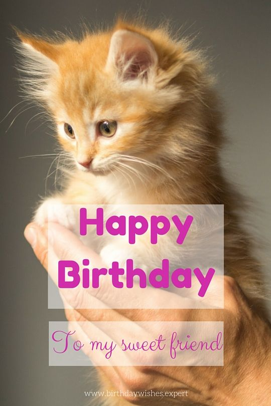 Cute Friendship Birthday Wishes ~ Cute birthday messages to make someone s special mariana and bff
