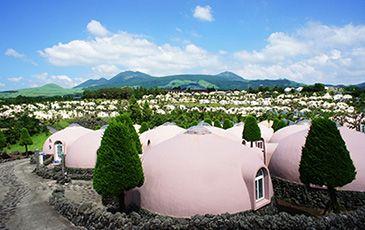 心について 大自然阿蘇健康の森は 健康習慣を身につけることを目指した宿泊施設です Places To Go National Parks Japan