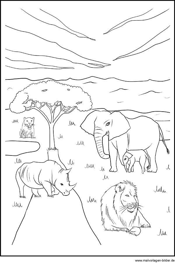 ausmalbilder afrikanische tiere | Afrika | Pinterest | Afrikanische ...