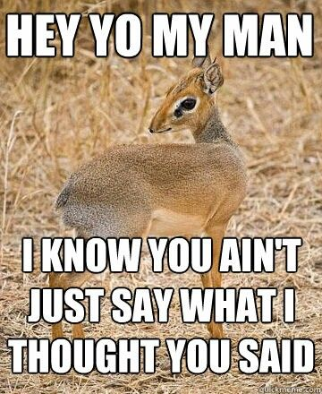 Hey Yo My Man Dik Dik Mothafcking Dik Diks Pinterest Dik Dik
