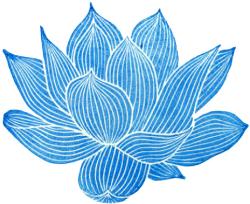 transparentflowers Transparent lotus flower. For more
