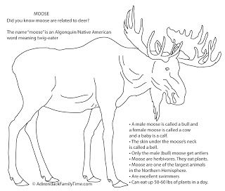 FREE kids of all ages activity coloring sheet with fun Moose facts. Nature Detective, perhaps for Home schoolers.