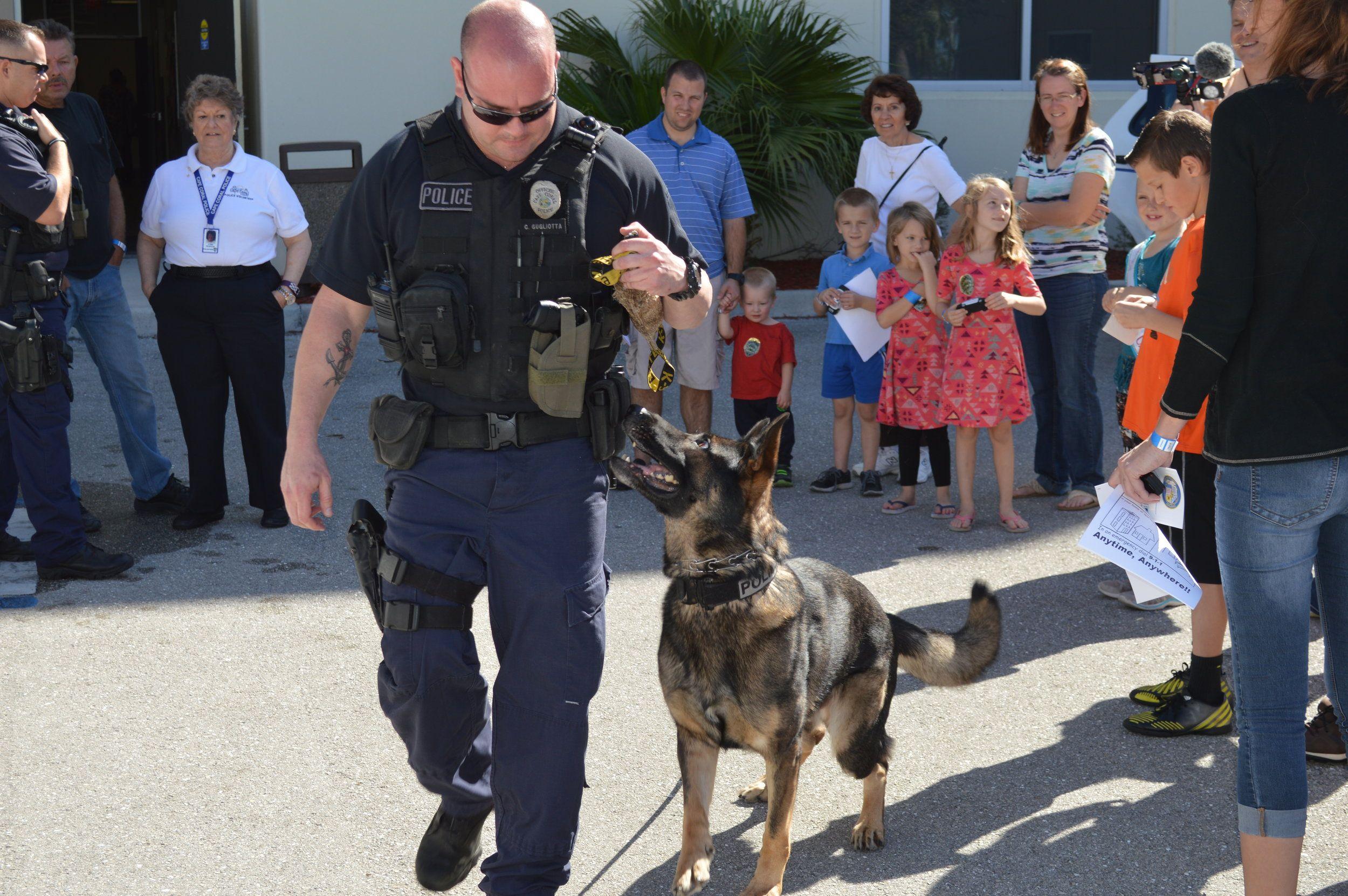 K9 Osmo Oz Von Der Schalbal Retirement Cape Coral Police Department Police Department Police K9 Cape Coral